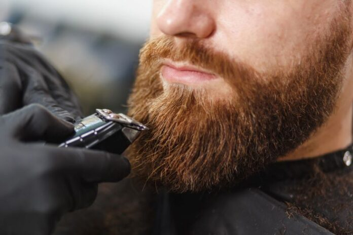 sanovnik brada