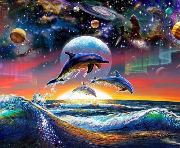 sanovnik delfini