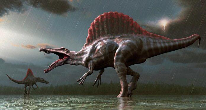 sanovnik dinosaurus